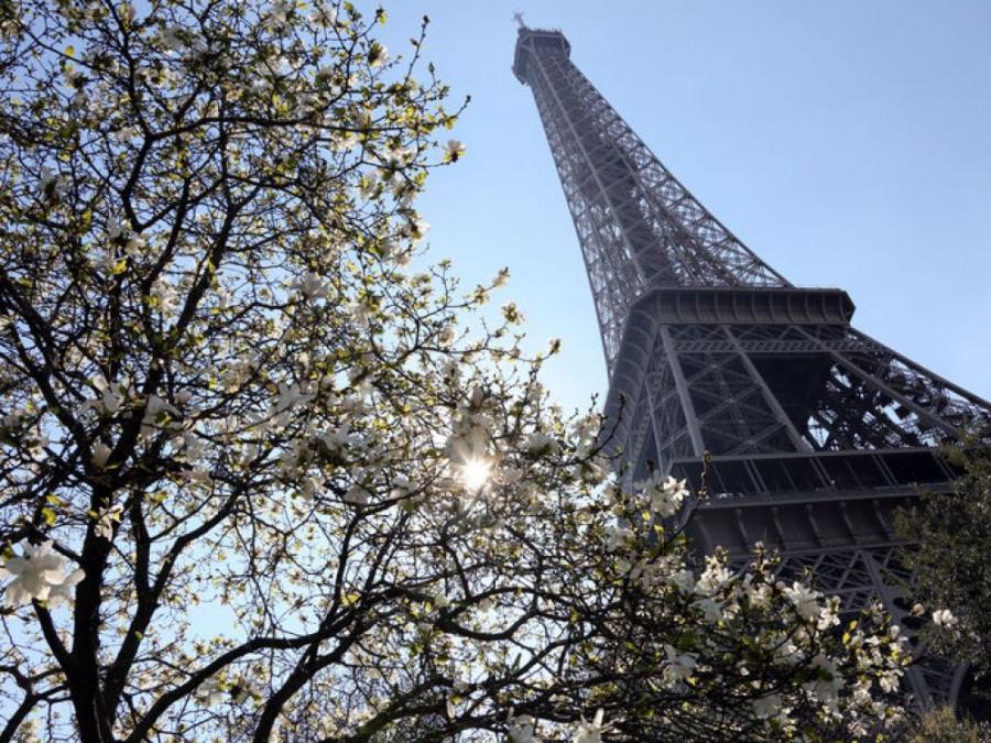 Actualite Actualite La ville de Paris vole au secours de la Tour Eiffel